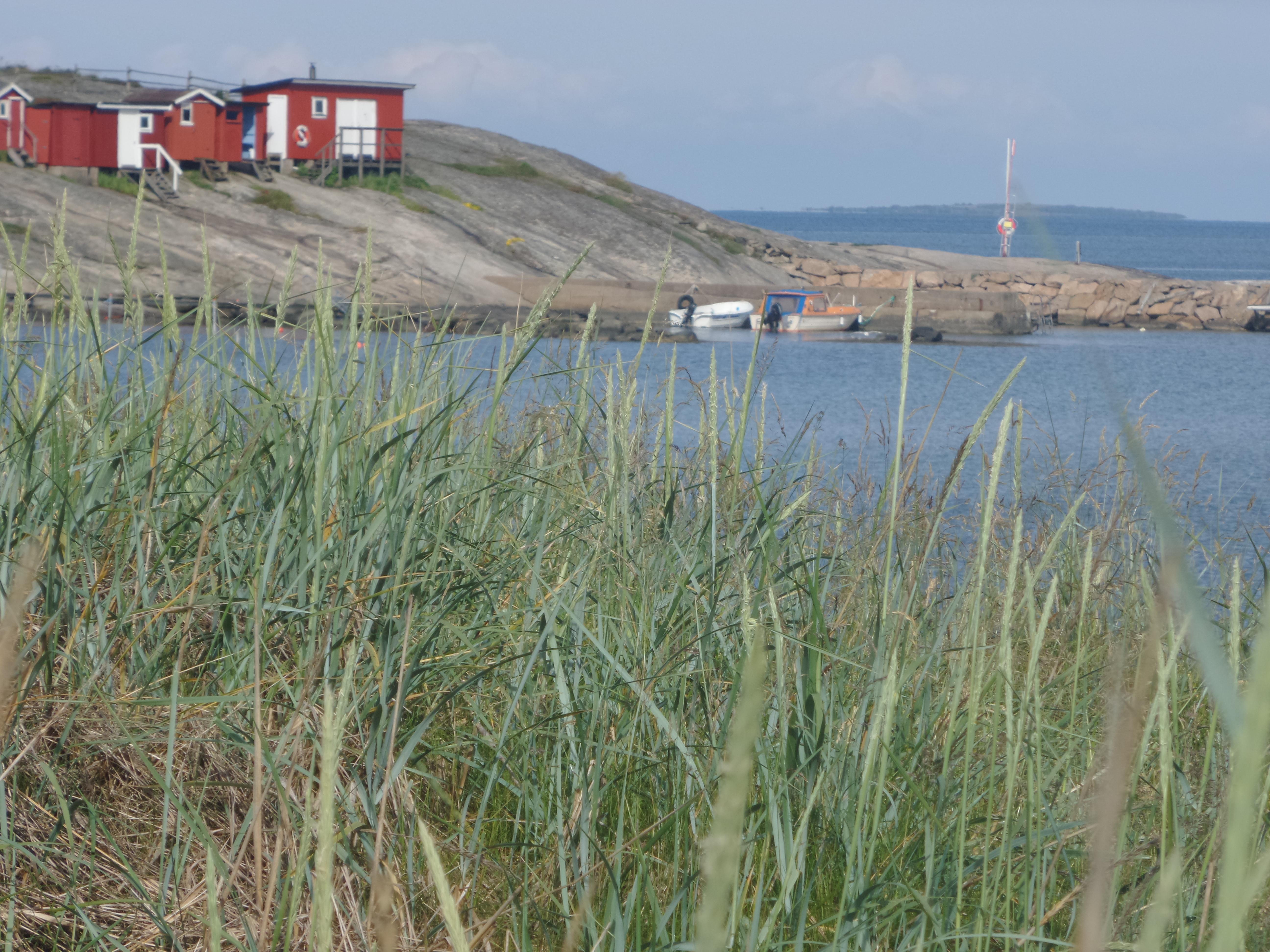frillesås Maria Åkerberg